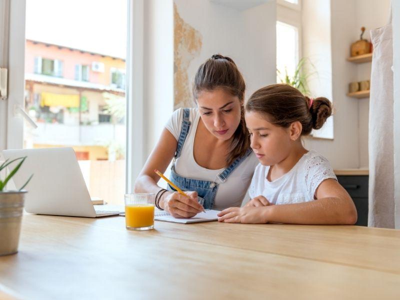 Ensino Doméstico E Individual
