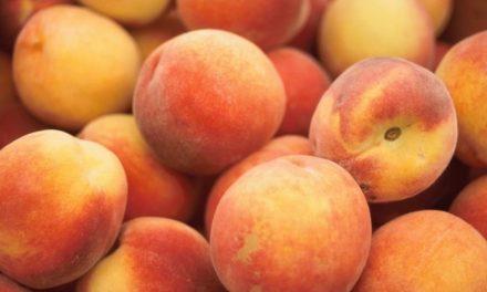 Pêssego – Fruta da Época