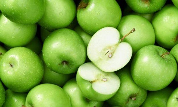 Maçã – Fruta da Época